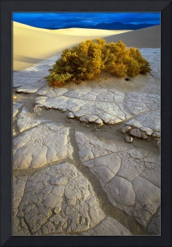 Death Valley Mudflat