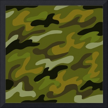 Abstract: Camouflage 1