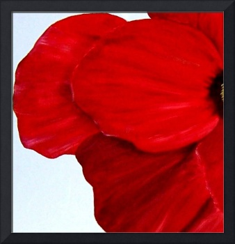 Abstract Poppies 1