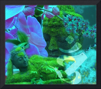 Buddhas and Orchids