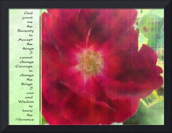 Serenity Prayer Red Rose on Green