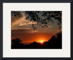 Sunsets gallery