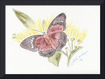 Butterfly and Flowers - 1