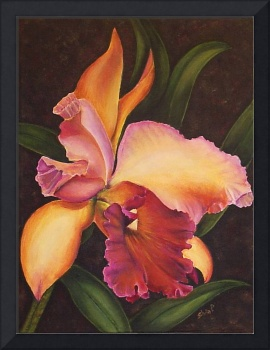 peach orchid