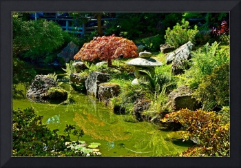 SF Japanese Tea Garden Study 1