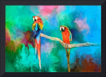 Tropical Macaws