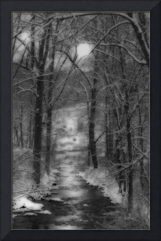 A Snowy Day at the Creek#2