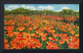 ORIGINAL FINE ART PAINTING ORANGE POPIES NORTH CAR