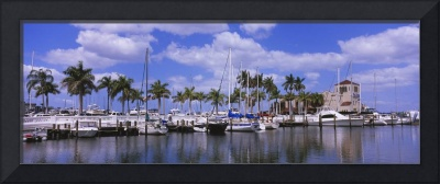 Sailboats at a harbor Twin Dolphin Marina Manatee