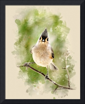 Winter Titmouse Watercolor Painting