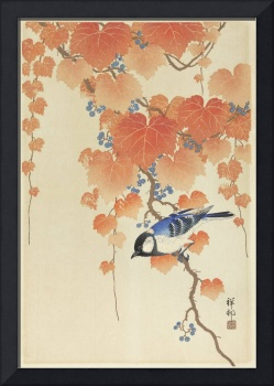 Japanese Bird on a Paulownia Branch by Ohara Koson