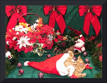 Santa Cat, Holiday Scene w Red Bows, Kitten Antics