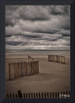 Beach Fences #1