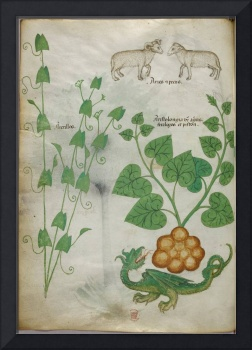 Miniatures of plants, sheep, and a dragon - (Tract