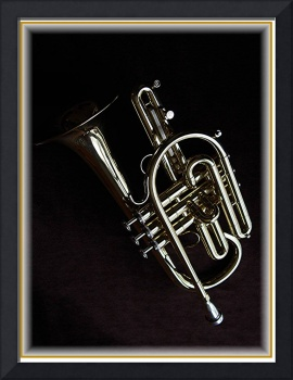 This Is Not a Trumpet