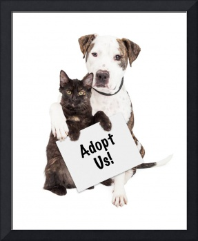 Dog and Kitten Adopt Us Sign