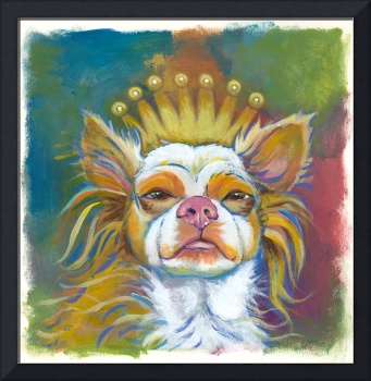 Her Majesty Will See You Now - fun chihuahua dog