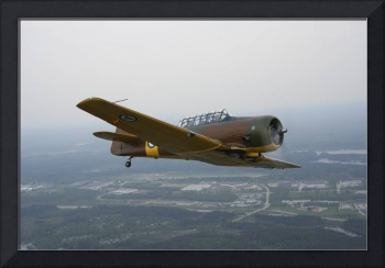 North American Aviation T-6 Texan trainer warbird