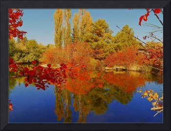 Where The Colours Of Autumn Greet The Pond