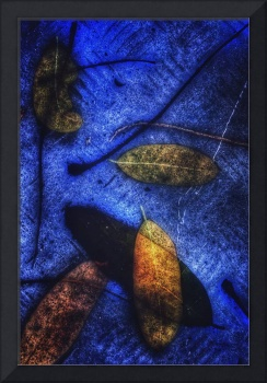 Abstract Leaves on Blue, 2 April 2018