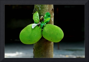 Sexy Green Fruits