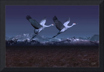 Cranes at Twilight