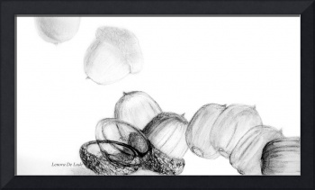 Acorn Falling in Black, White, and Gray