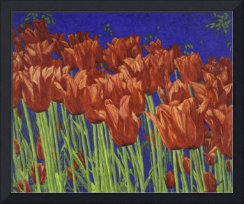 Fine Art Prints Red Tulips Art Flowers Tulip Art