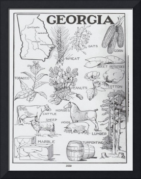 Vintage Agricultural Map of Georgia (1915)