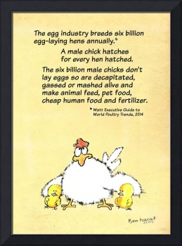Six Billion Chicks