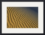 Descending Dune Abstract by Marylynne Diggs