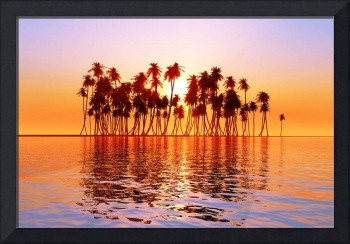 sun over coconut palms