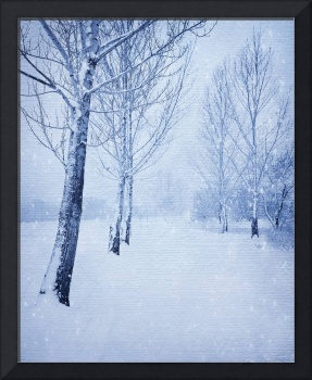BLUE WINTER PATH