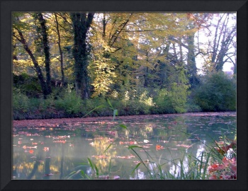 reflets sur le canal  / reflections on the canal