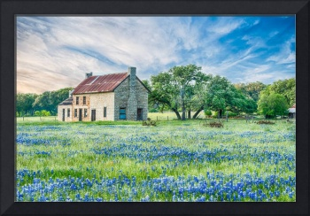 Texas Farmhouse and Bluebonnets