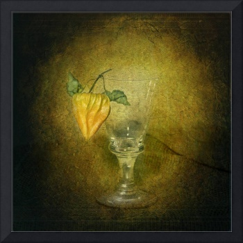Glass and Physalis