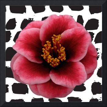 Pink and white camellia on dots - quirky for etsy