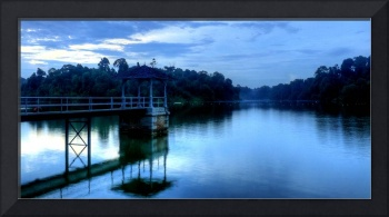 Evening Water Macritchie