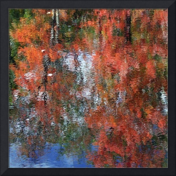 Autumn Abstract Hancock New Hampshire