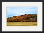 Autumn on Hill Cumorah by D. Brent Walton