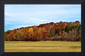 Autumn on Hill Cumorah
