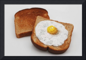 Toast Embroidery #1: Egg on Toast