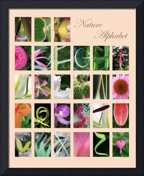 Nature Alphabet Peach