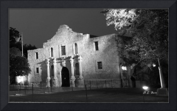Alamo at Night (Black & White)