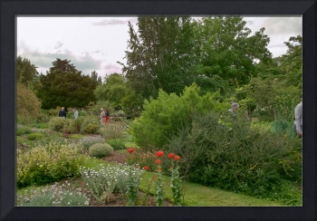 In the Physic Garden, Chelsea 29