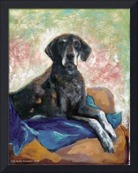 German Short Hair Pointer - Babe by RD Riccoboni