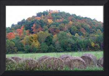 fall hills of color