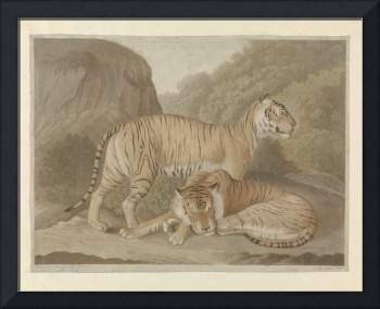 Two tigers in a landscape, A. Lutz, after Isaac va