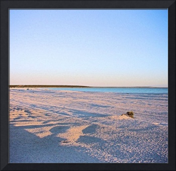 Shell Beach Shark Bay Australia