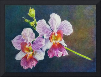 Painting of Orchid Floral 2, by Debbie Teo